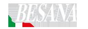 logo-besana